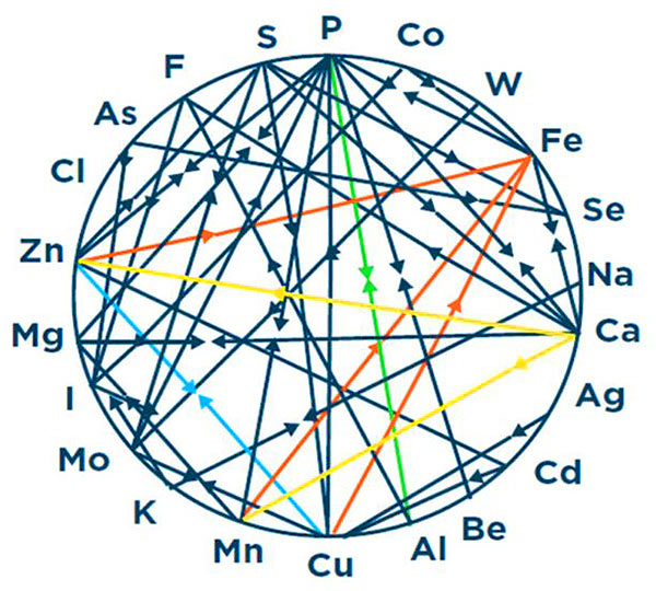 Dyers Wheel of Mineral Interactions