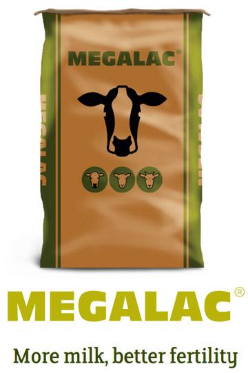 Megalac bag