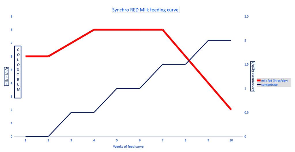 Britannia Synchro Red Performance Metrics Chart