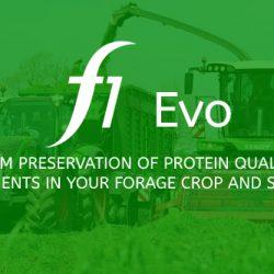 F1 Evo News Results