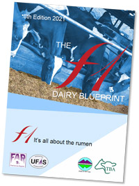 The F1 Dairy Blueprint Version 8 (2021 Edition)